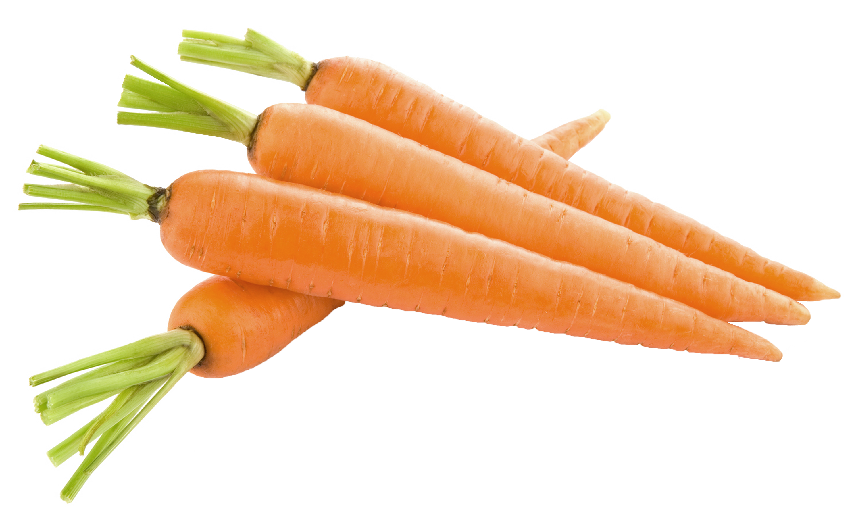 carrot_PNG4985.png